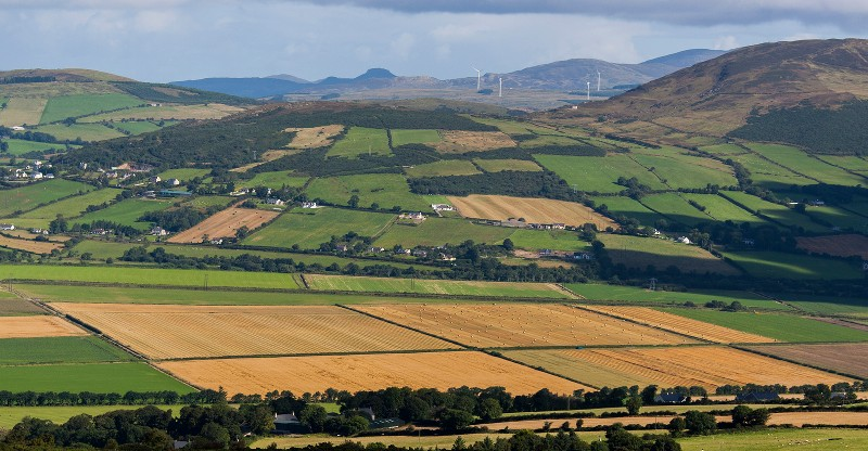 Local Government Perspectives on Rural Development in Ireland