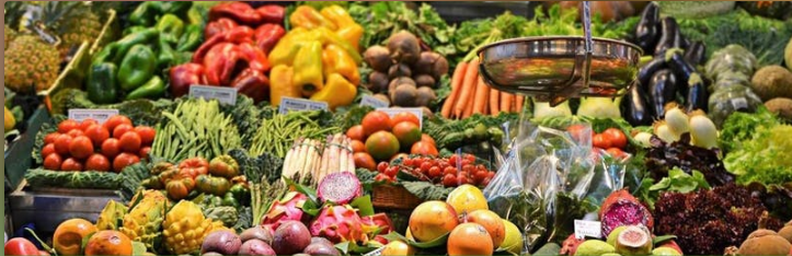 The EAT-Lancet Commission on Food, Planet, Health Launch