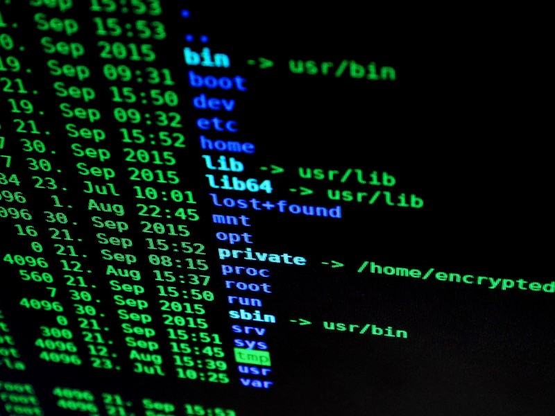 Developing the talent pool to help businesses counter cyber crime